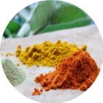 Pflanzenpulver und -extrakte