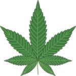 CBD | Cannabinoide